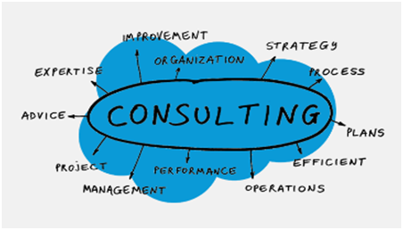 Salesforce Consulting process - janbask