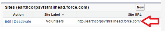 How to Integrate Salesforce CRM with Your Website
