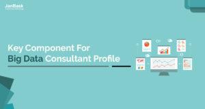 Key Component for Big Data Consultant Profile