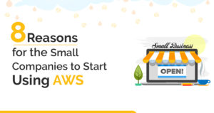8 Reasons for the Small Companies to Start Using AWS