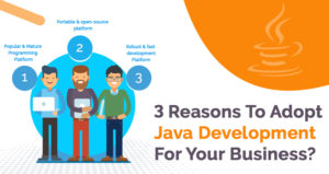 Top 3 Reasons Why Should You Adopt Java Development For Your Business?
