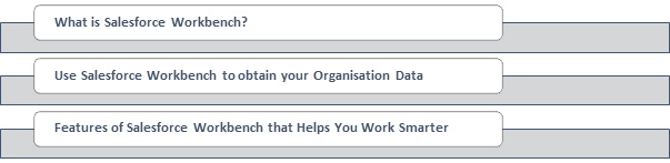 How to Work Smarter with Salesforce Workbench