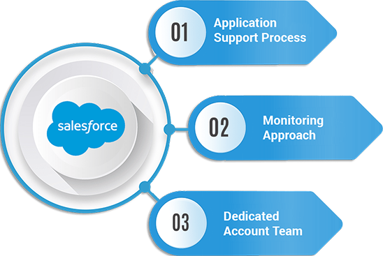 Salesforce Application Customer Support And Maintenance Services